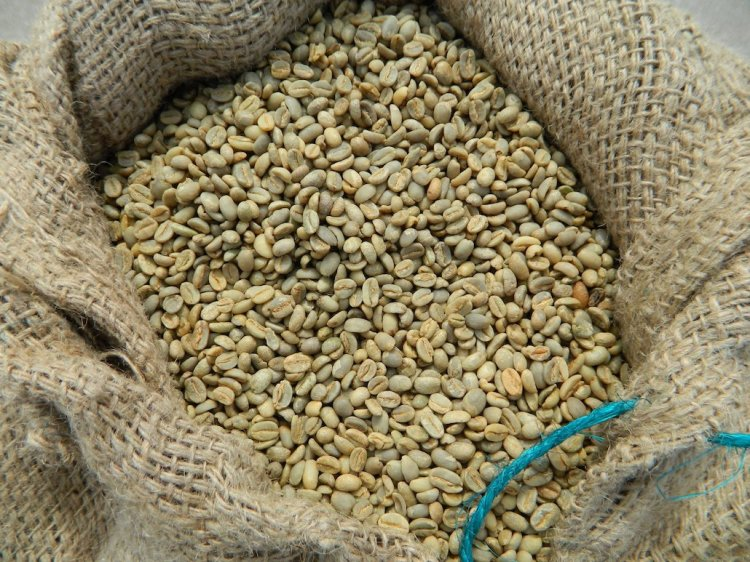 Ethiopia_Harrar_Longberry_raw_coffee_beans_K